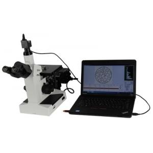 倒置金相显微镜BM-4XC