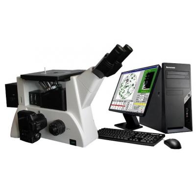 倒置金相显微镜BM-4XF